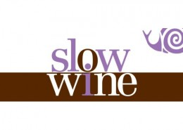 taste-italy-slow-wine-us-tour-2014-40